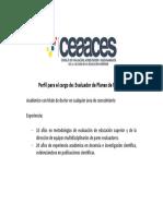 01.06.2016 Perfil evaluador planes de mejora.pdf