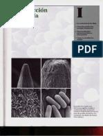 Capítulo 01 - La evolución de la célula.pdf