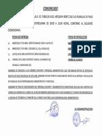 pdf-CRONOGRAMA.pdf