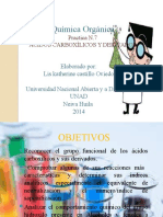 Practica 7 Quimica Organica