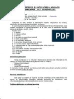Curs-2-Nursing-Varstnic Materie Prima