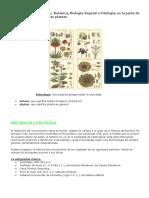 5- BOTANICA INTRODUCCIÓN 2.doc
