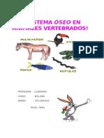Sistema Oseo de Los Animales -