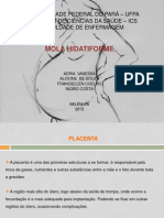 SLIDE APRESENTAÇÃO PRONTO MOLA original 1.pdf