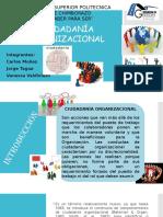 ciudadania-organizacional