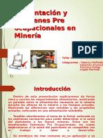 Ambiente Minero Ver 2