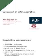 08. Computación en Sistemas Complejos (Ponencia Oct, 2014)
