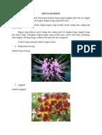 Tugas biologi bunga dan buah.docx