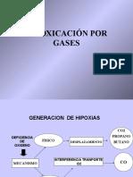 Intoxicacion Gases 2013