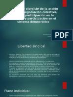 Presentación Laboral. Derecho Al Ejercicio de La Acción Sindical.