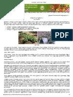 Horticulture Spice Crops Pepper