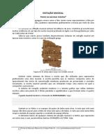 9ano_02_Notacao musical.pdf