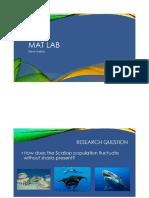 matlab presentation