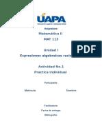 Actividad Práctica I (1).docx