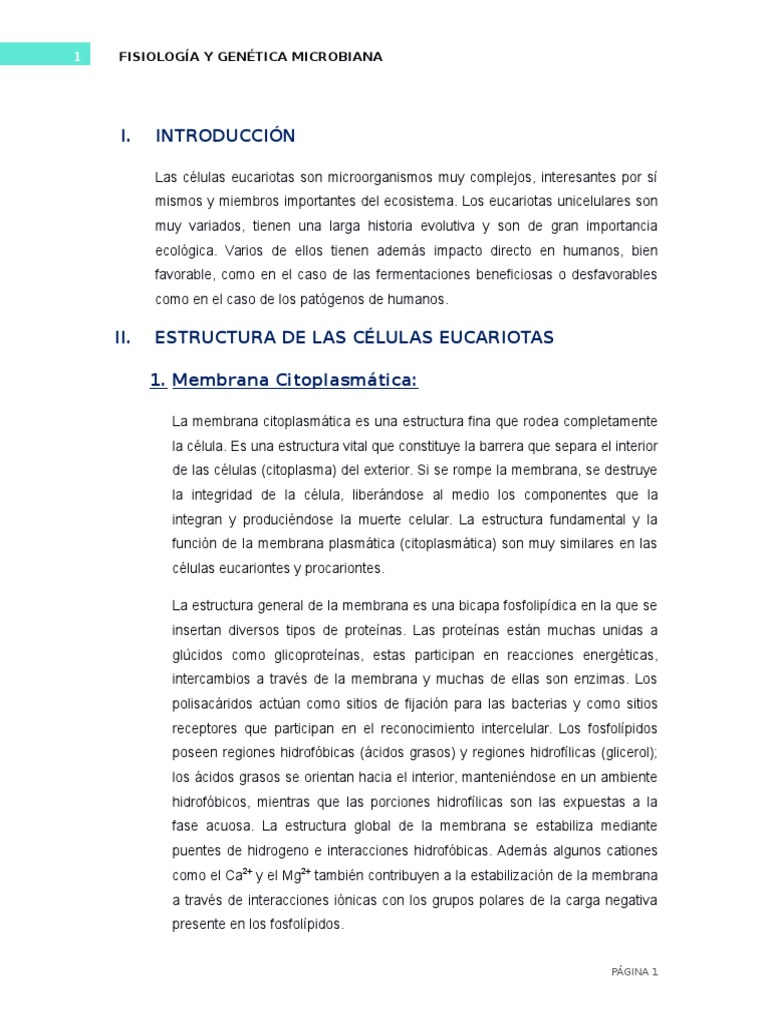 Célula Eucariota Fisio Y Genetica Bacteriana Bicapa