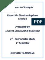 Report on Newton Raphson Method PDF