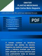 EMATER_PLANTAS_MEDICINAIS