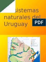 Sistemas Ecológicos Del Uruguay