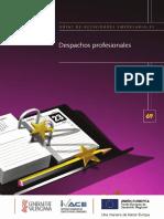 252810471-Despachos-Profesionales.pdf
