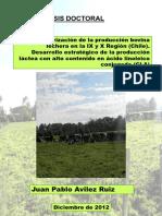 10_16_51_AVILEZ_RUIZ_tesis.pdf