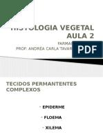 Histologia Vegetal Aula 2_20130411150806