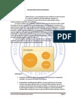 Fisiopatologia Del TEC