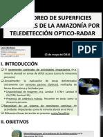Monitoreo de Superficies Forestales de La Amazonia