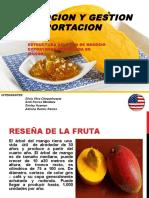 Exposicion Del Mango-2