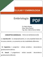 Embriología Vet 1