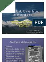 File 54 Fisiologia Del Dializador