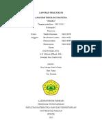 laporan anfisman darah 2 fix.docx