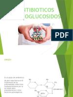 Aminoglucidos y Quinolonas