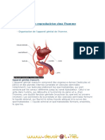 cours complet reproduction.pdf
