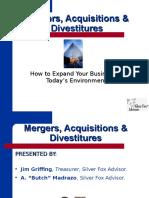 Ppt Mergers Acq Div