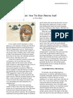 brain-rewires.pdf