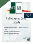 depresionMLpresentacion (1)