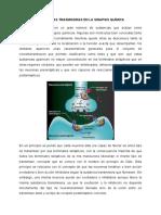 Sustancias Trasmisoras en La Sinapsis Química