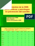 Lineamientos Sobre El Suicidio
