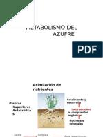 Metabolismo de Azufre Clase