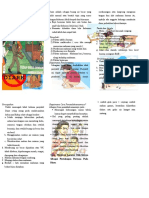 43. Leaflet Diare