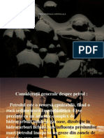 Piața Mondiala a Petrolului