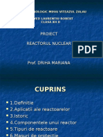 Reactorul nuclear.ppt