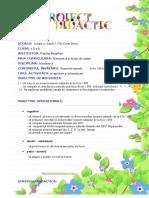 Proiect Matematica Clasa a II A