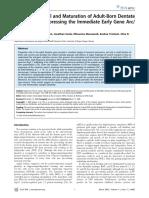 arc arg 3.1.pdf