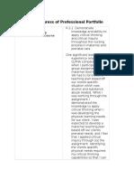 report on 2004 progress of professional portfolio