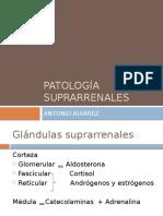 Expo Patologia de Glandula Suprarenal