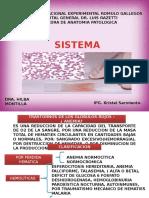 Anatomia Patologia Seminario