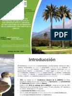 Sistema de Protección Del Patrimonio Natural en Chile y Sus Desafíos Ante El Proceso de Declaratoria de Patrimonios de La Humanidad Por Parte de l