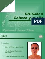 62CABcara