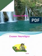 Valoracion Neurologica